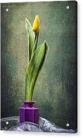 Grunge Yellow Tulip Acrylic Print by Erik Brede