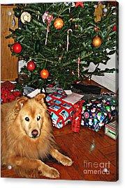 Guardian Of The Christmas Tree Acrylic Print by Sarah Loft