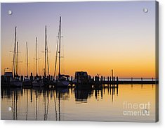 Gulf Of Mexico Sailboats At Sunrise Acrylic Print by Andre Babiak