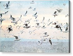 Gulls Flying Over The Ocean Acrylic Print by Peggy Collins