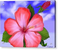 Gumamela Acrylic Print by Twinfinger