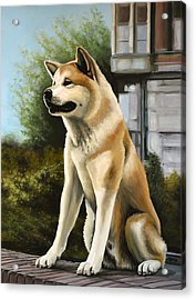 Hachi Painting Acrylic Print by Paul Meijering