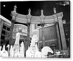 Hail Caesars Acrylic Print by John Rizzuto