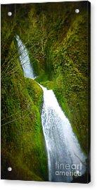 Hakeena Falls Long Acrylic Print by Susan Garren