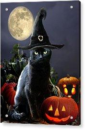 Witchy Black Halloween Cat Acrylic Print by Regina Femrite