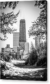 Hancock Building Through Trees Black And White Photo Acrylic Print by Paul Velgos