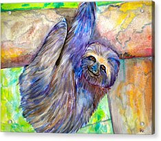 Hang In There Acrylic Print by Debi Starr
