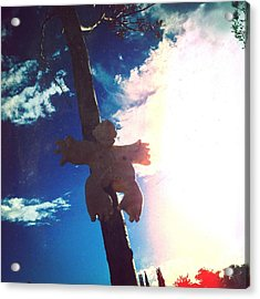 Hanging In The Sun  Acrylic Print by Mark M  Mellon