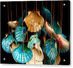Hanging Together - Sea Shell Wind Chime Acrylic Print by Steven Milner