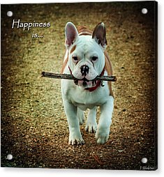 Happiness Is Acrylic Print by Jordan Blackstone
