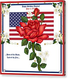 Happy Birthday America Acrylic Print by Anne Norskog