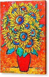 Happy Sunflowers Acrylic Print by Ana Maria Edulescu
