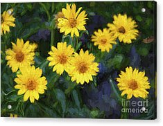Happy Yellow Flowers Painterly Acrylic Print by Andee Design
