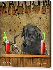 Hare Of The Dog... Acrylic Print by Will Bullas