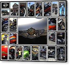 Harley Davidson Motorcycles Acrylic Print by Stefano Senise