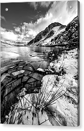 Harsh Winter Acrylic Print by Adrian Evans