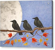 Harvest Crows Acrylic Print by Alyssa Glosson