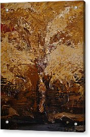 Harvest Acrylic Print by Holly Picano