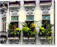 Havana Windows Acrylic Print by Karen Wiles