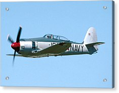 Hawker Sea Fury Nx51sf Flying Camarillo August 23 2003 Acrylic Print by Brian Lockett
