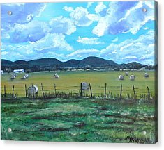 Hay Bales Acrylic Print by Melissa Torres