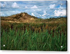 Hay Mound Acrylic Print by Mike Feraco