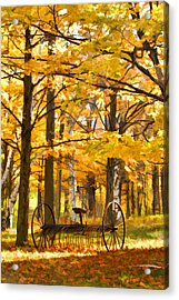 Hay Rake At Rest Acrylic Print by Christopher Arndt