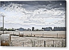 Haybales Fields Trees And Clouds Acrylic Print by Shivonne Ross