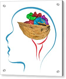 Head And Brain Abstract Acrylic Print by Ioan Panaite