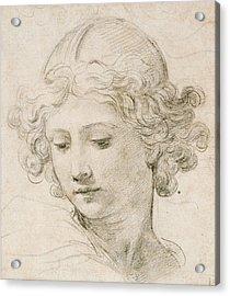 Head Of An Angel Acrylic Print by Pietro da Cortona