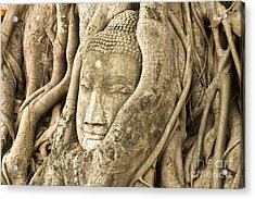 Head Of Buddha Ayutthaya Thailand Acrylic Print by Colin and Linda McKie