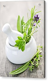 Healing Herbs In Mortar And Pestle Acrylic Print by Elena Elisseeva