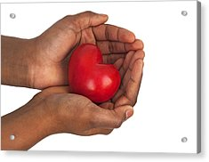 Heart In Hands Acrylic Print by Chevy Fleet
