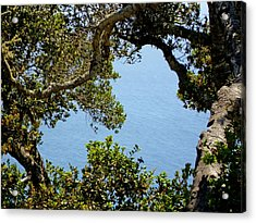 Heart Of Nepenthe - Big Sur Acrylic Print by Phoenix The Moody Artist