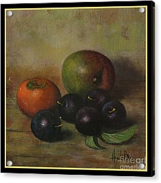 Henk Bos Fruits Still Life Plums  Acrylic Print by Pierpont Bay Archives