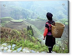 Her Rice Terraces Acrylic Print by King Wu