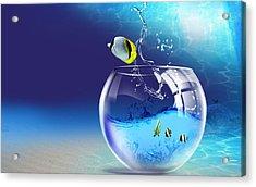 Here Fishy Fishy Acrylic Print by Gianfranco Weiss