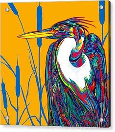 Heron Acrylic Print by Derrick Higgins