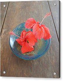 Hibiscus #4 Acrylic Print by Chikako Hashimoto Lichnowsky
