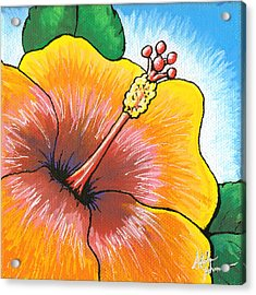 Hibiscus Number 2 Acrylic Print by Adam Johnson