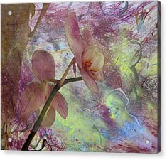 Hidden Orchid Acrylic Print by Donna Walsh