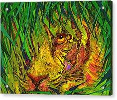 Hiding Acrylic Print by Jane Schnetlage