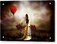 High Hopes Acrylic Print by Shanina Conway