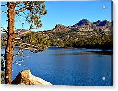High Sierra Gem Acrylic Print by Lynn Bawden