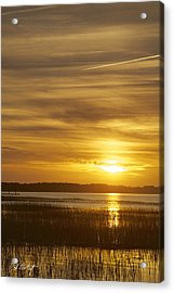 High Tide In The Marsh Acrylic Print by Phill Doherty