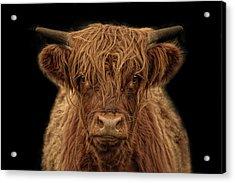 Highlander Acrylic Print by Joachim G Pinkawa