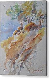 Hillside Rocks Acrylic Print by John  Svenson