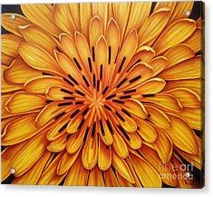Hipnose Acrylic Print by Paula L