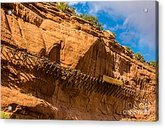 Historic Hanging Flume - Dolores River - Colorado Acrylic Print by Gary Whitton