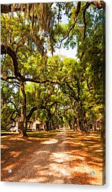 Historic Lane 2 Acrylic Print by Steve Harrington
